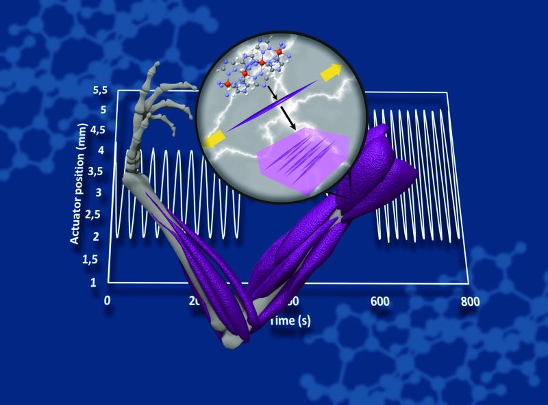 Expansion colossale de nano-composites à base de matériaux à transition de spin : vers le muscle artificiel